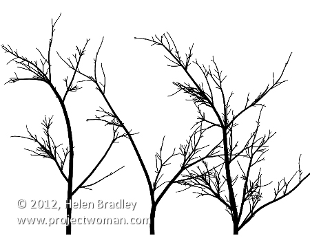 fractal trees with context free art 3 Way Too Cool    Make your own fractal trees