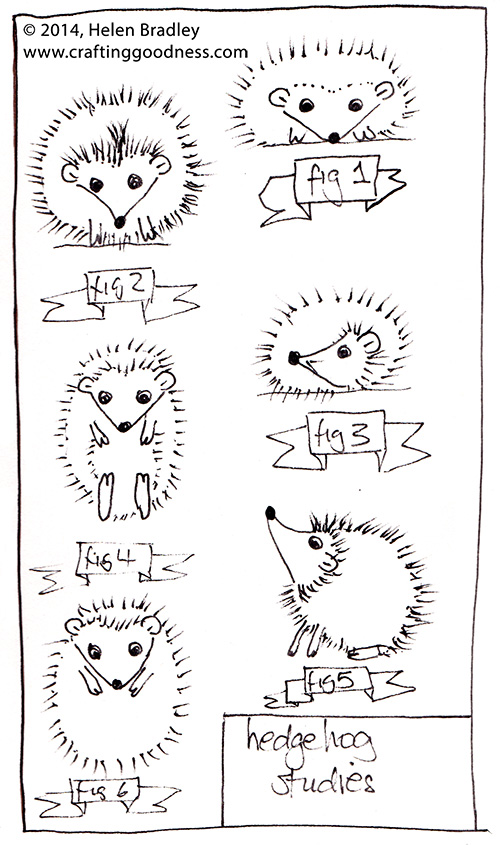 hedgehog studies Hedgehog Studies   how to draw